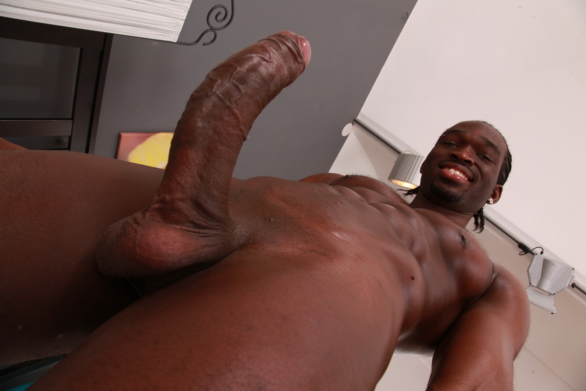 Black hung gay cock